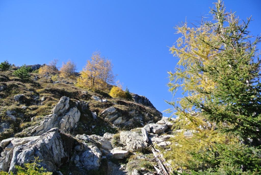 12-10-20-082-Gotschna-Serneus