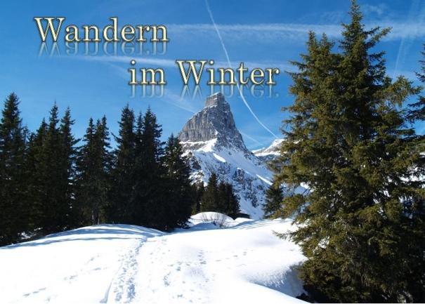 t-Winterwandern