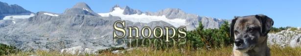 t-snoops