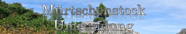 t8-Muertschenstock