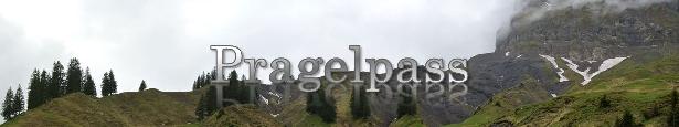 t9-Pragelpass