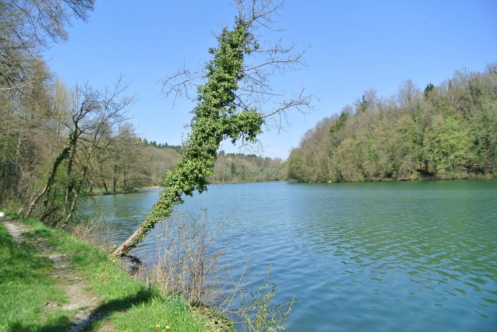 Rheinuferweg-13-04-24-123