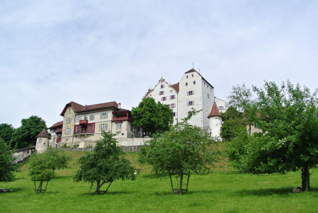 2014-05-25-210_Chestenberg