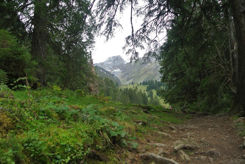 2014-09-26-036_Oberblegisee
